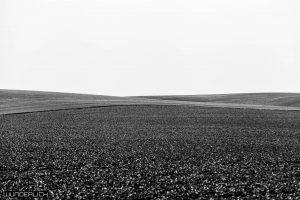 Die Weite der Uckermark